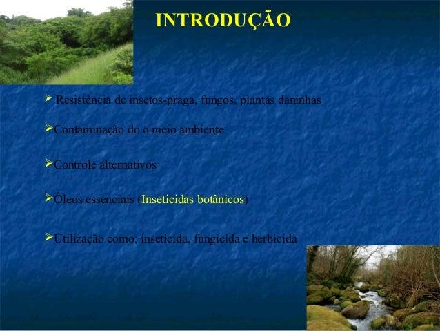 Dissertacao apresentacao Slide 2