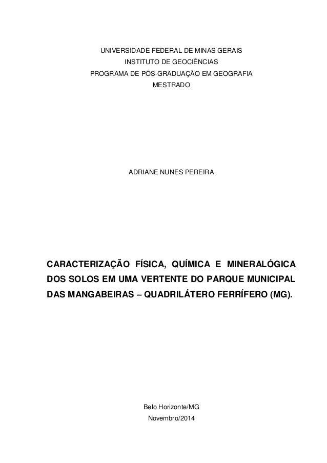 UNIVERSIDADE FEDERAL DE MINAS GERAIS INSTITUTO DE GEOCIÊNCIAS PROGRAMA DE PÓS-GRADUAÇÃO EM GEOGRAFIA MESTRADO ADRIANE NUNE...