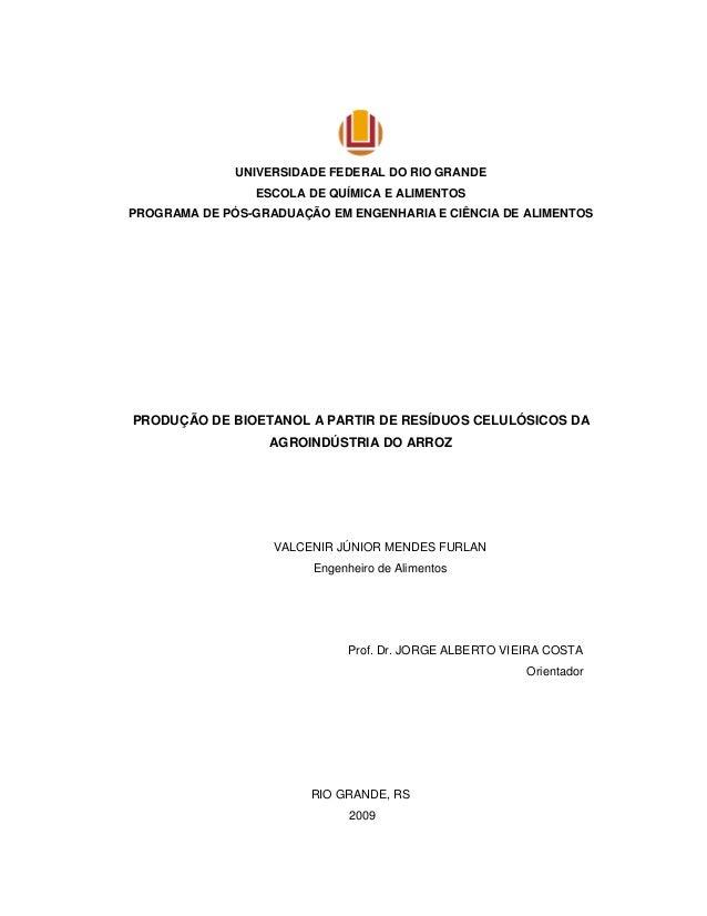 UNIVERSIDADE FEDERAL DO RIO GRANDE ESCOLA DE QUÍMICA E ALIMENTOS PROGRAMA DE PÓS-GRADUAÇÃO EM ENGENHARIA E CIÊNCIA DE ALIM...