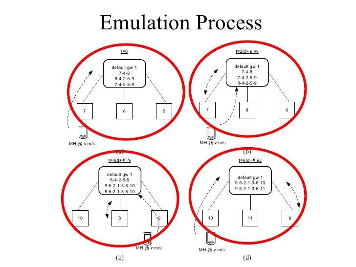 Emulation Process