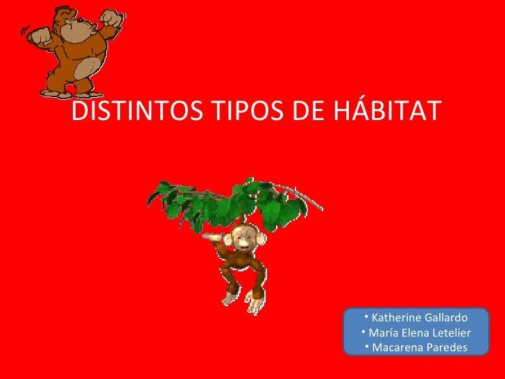 DISTINTOS TIPOS DE HÁBITAT                     • Katherine Gallardo                    • María Elena Letelier             ...