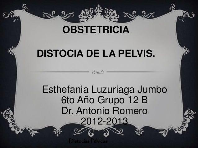 OBSTETRICIADISTOCIA DE LA PELVIS.Esthefania Luzuriaga Jumbo    6to Año Grupo 12 B    Dr. Antonio Romero         2012-2013 ...