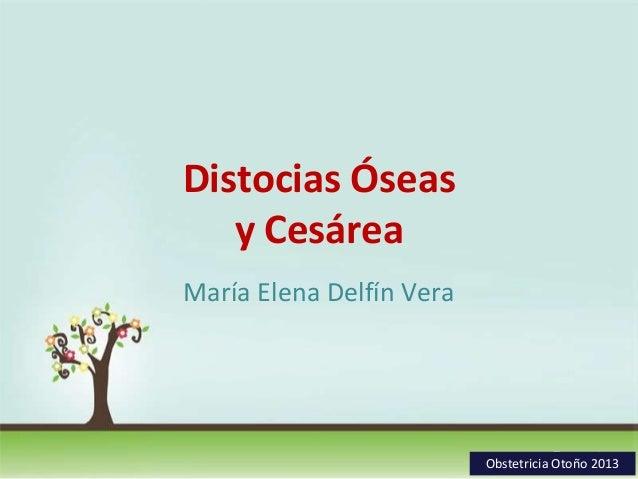 Distocias Óseas y Cesárea María Elena Delfín Vera  Page 1 Obstetricia Otoño 2013