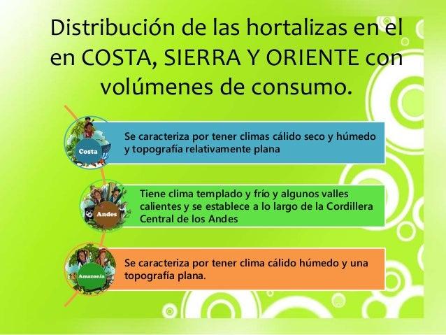 Distribuci n de las hortalizas en el en costa for Plantas hortalizas ejemplos