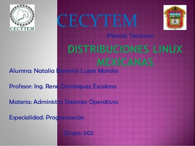 CECYTEM Plantel: Tecámac Alumna: Natalia Berenice Lujan Morales Profesor: Ing. René Domínguez Escalona Materia: Administra...