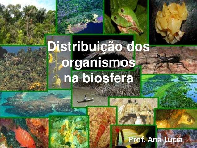 Distribuição dos organismos na biosfera Prof. Ana Lucia