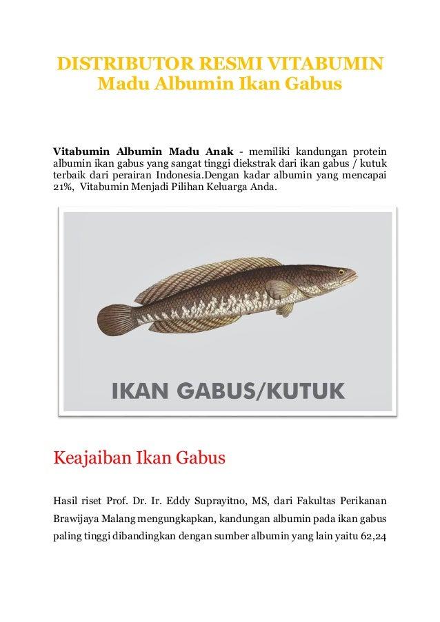 Unduh 75+ Gambar Organ Dalam Ikan Gabus HD Terpopuler