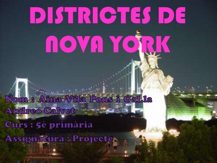 DISTRICTES DE NOVA YORK