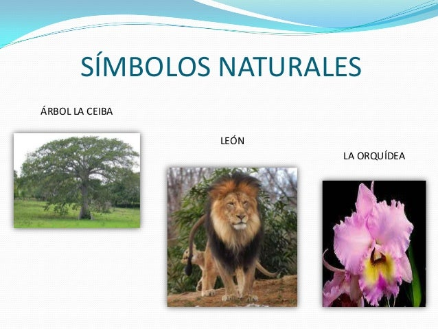 Simbolos Naturales Del Distrito Capital   distrito capital
