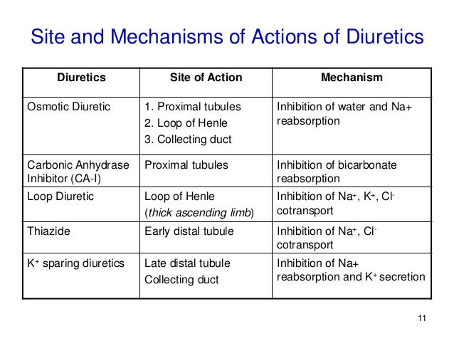 diuretics-11-638?cb=1466100431, Skeleton