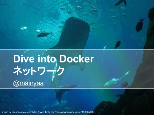 Dive into Docker ネットワーク @mainyaa Image by Countney McNealy https://www.flickr.com/photos/courageousferret/4500059665