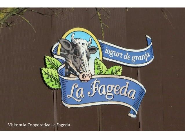 Visitem la Cooperativa La Fageda