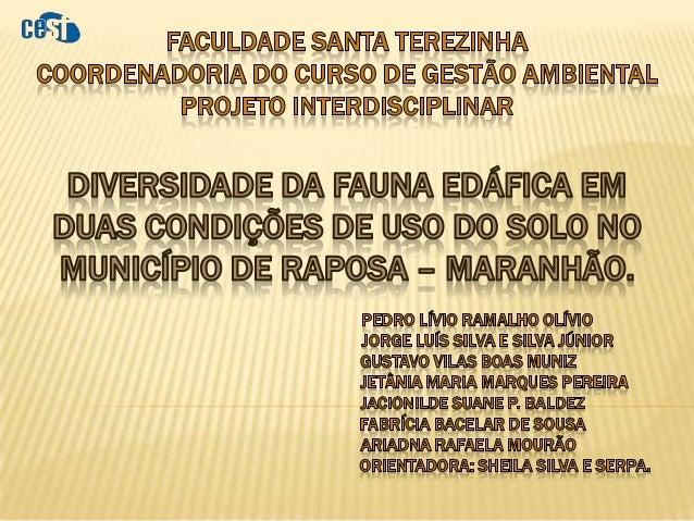   Avaliar a composição da fauna edáfica em duas condições do uso do solo no município de Raposa – MA.