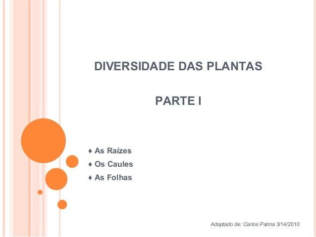 DIVERSIDADE DAS PLANTAS PARTE I ♦ As Raízes ♦ Os Caules ♦ As Folhas Adaptado de: Carlos Palma 3/14/2010