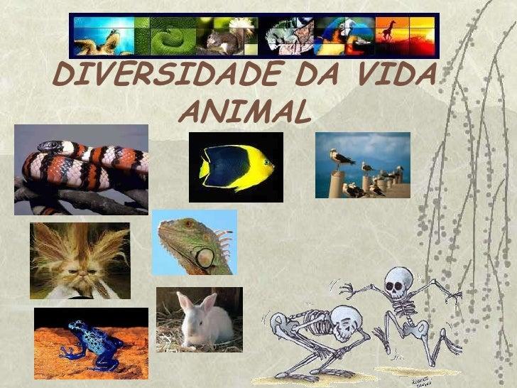 DIVERSIDADE DA VIDA ANIMAL<br />