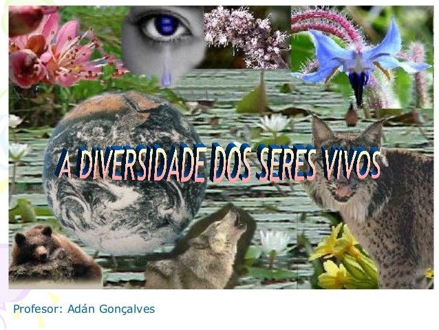 Profesor: Adán Gonçalves