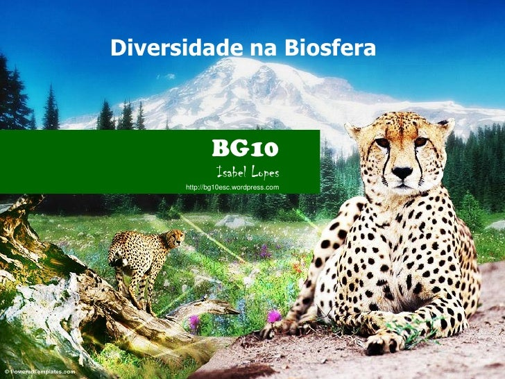 Diversidade na Biosfera             BG10               Isabel Lopes      http://bg10esc.wordpress.com