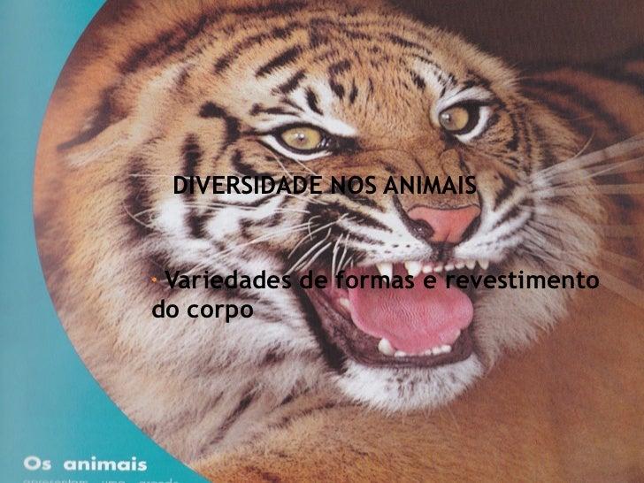 DIVERSIDADE NOS ANIMAIS <ul><li>Variedades de formas e revestimento do corpo </li></ul>