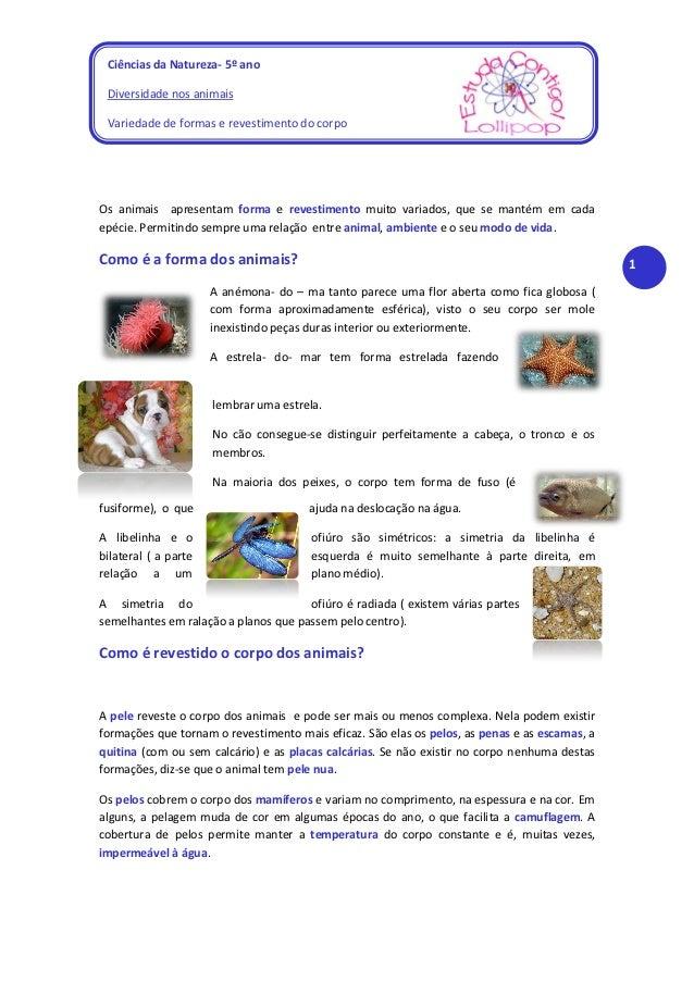 Ciências da Natureza- 5º ano Diversidade nos animais Variedade de formas e revestimento do corpoOs animais apresentam form...
