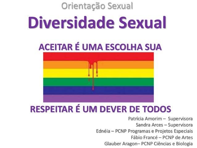 Orientação Sexual Diversidade Sexual Patrícia Amorim – Supervisora Sandra Arces – Supervisora Ednéia – PCNP Programas e Pr...