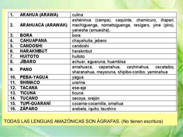VII.- FAMILIA lingüística JIBARO Los Aguaruna, pueblo dinámico y progresista, Es el grupo con el mayor volumen poblacional...