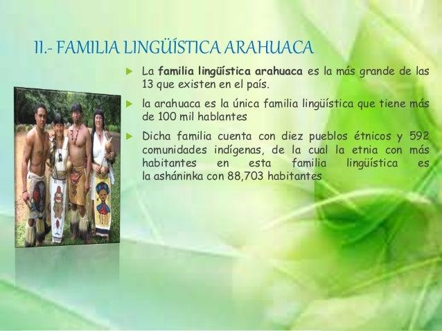 VIII.- FAMILIA LINGÜÍSTICA PANO Las lenguas pano son una pequeña familia de lenguas de la selva amazónica formada por una ...