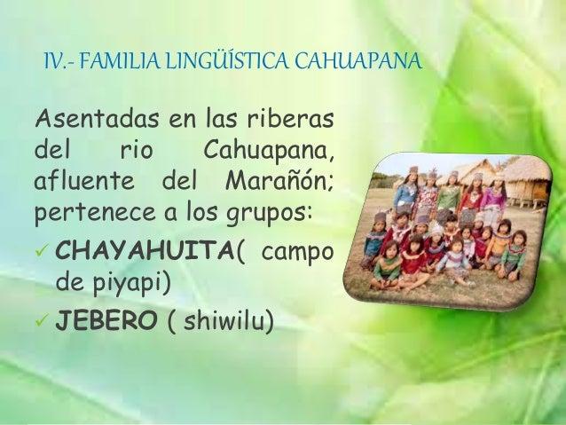 XI.- FAMILIA LINGÜÍSTICA TUPI- GUARANIEn el Perú, esta familia abarca las riberas de los ríos Marañón, Alto Amazonas, Nana...