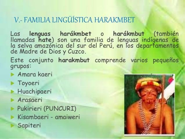 XII.- FAMILIA LINGÜÍSTICA ZAPARO Se ubica entre el Perú y Ecuador. en nuestro país, comprende las siguientes lenguas:  An...