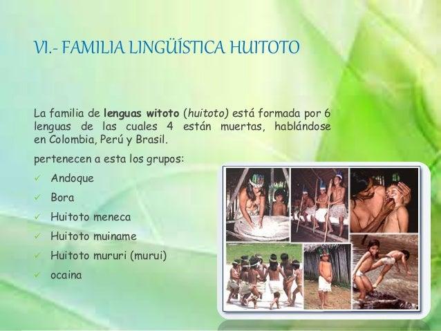 XIII.- FAMILIA LINGUISTICA TUCANO Procede de Colombia y se estableció en el extremo superior fronterizo con Colombia. Comp...
