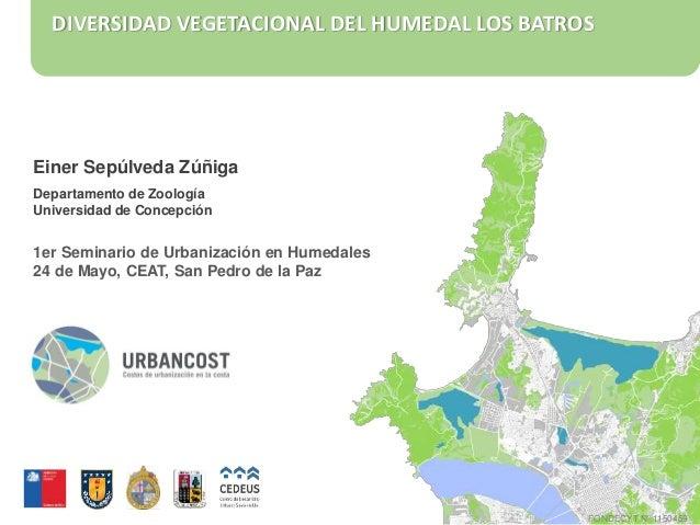 DIVERSIDAD VEGETACIONAL DEL HUMEDAL LOS BATROS Einer Sepúlveda Zúñiga Departamento de Zoología Universidad de Concepción 1...