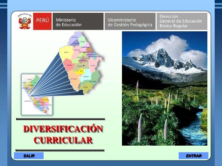 DIVERSIFICACIÓN   CURRICULAR SALIR             ENTRAR