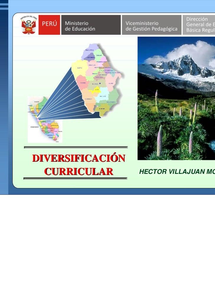 DIVERSIFICACIÓNDIVERSIFICACIÓN  CURRICULAR      MARCO ANTONIO RODRMORY H.                  HECTOR VILLAJUAN ÍGUEZ