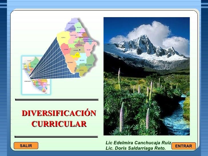DIVERSIFICACIÓN CURRICULAR Lic Edelmira Canchucaja Ruiz Lic. Doris Saldarriaga Reto.  SALIR ENTRAR