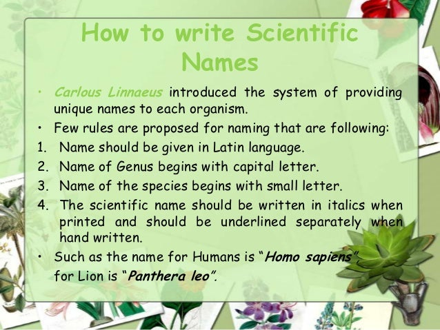 how to write scientific names of bacteria