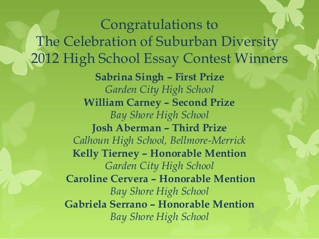 Diversity essay high school
