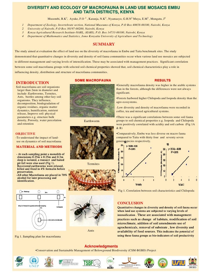 DIVERSITY AND ECOLOGY OF MACROFAUNA IN LAND USE MOSAICS EMBU                                      AND TAITA DISTRICTS, KEN...