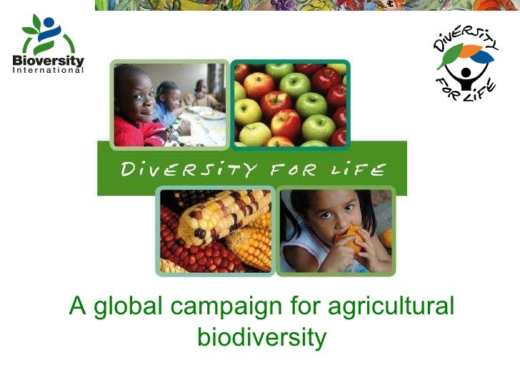 A global campaign for agricultural biodiversity