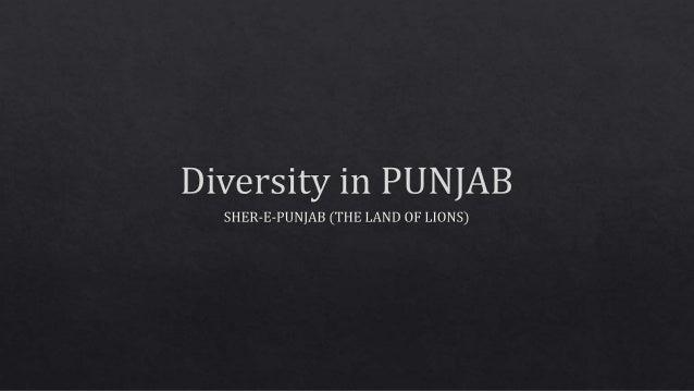 Diversity in punjab