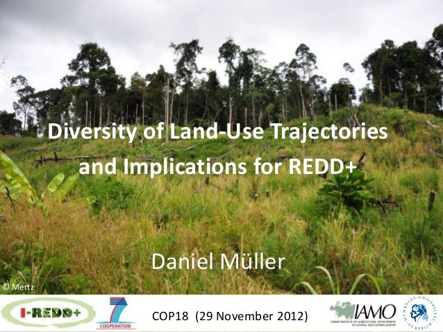 Diversity of Land-Use Trajectories             and Implications for REDD+                    Daniel Müller© Mertz         ...