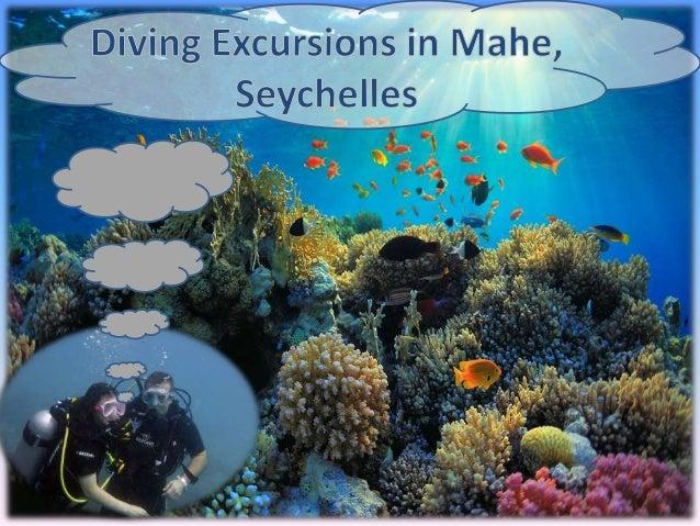 Diving sites in Seychelles Brissaire Rocks Mahe Island, Seychelles L'ilot Island Mahe Island, Seychelles