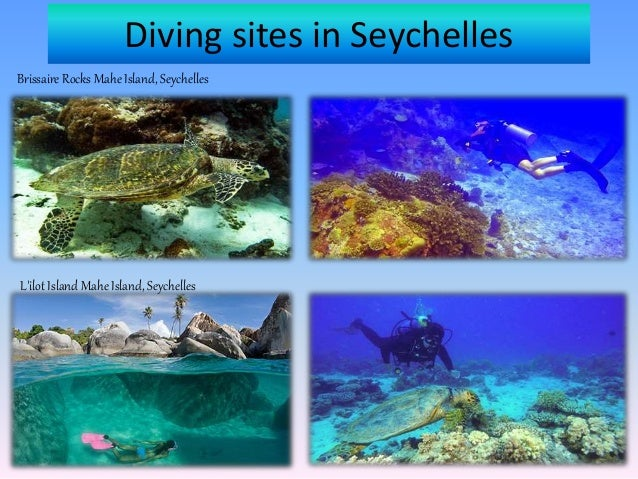 Diving Excursions in Mahe Seychelles Slide 2