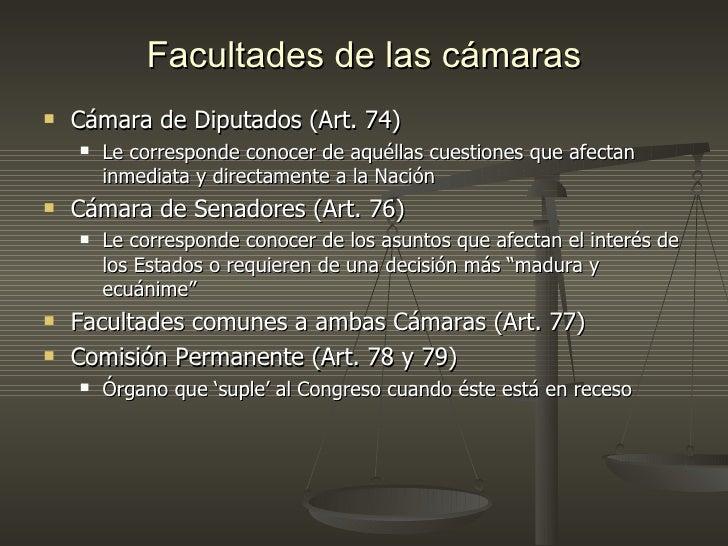 Division del derecho for La camara de senadores