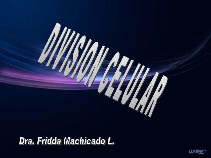 DIVISION CELULAR Dra. Fridda Machicado L.
