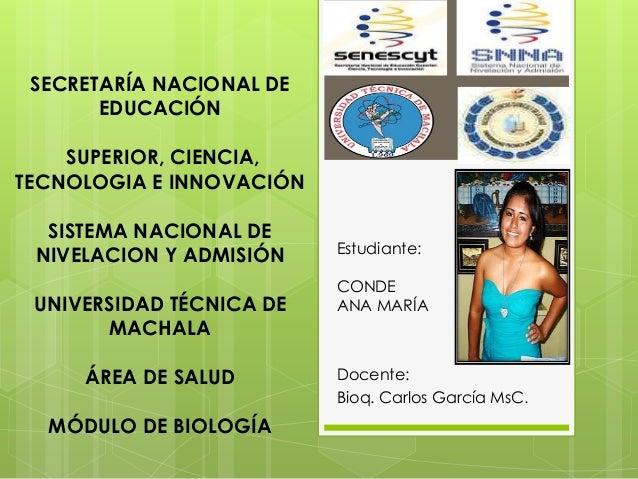 SECRETARÍA NACIONAL DE EDUCACIÓN SUPERIOR, CIENCIA, TECNOLOGIA E INNOVACIÓN SISTEMA NACIONAL DE NIVELACION Y ADMISIÓN UNIV...