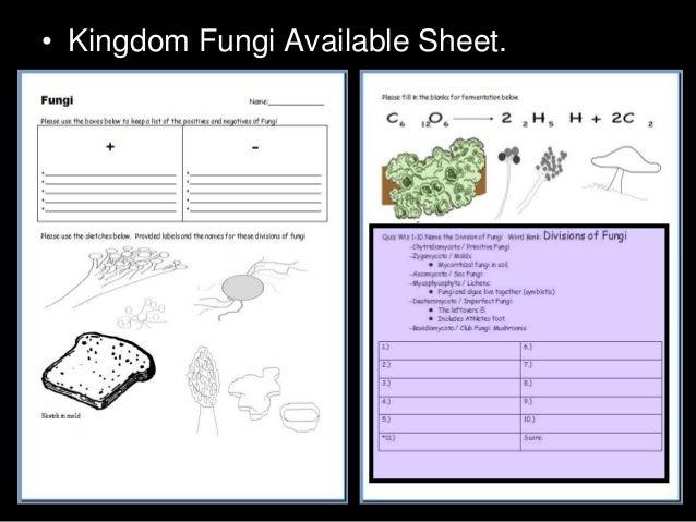 kingdom fungi visual powerpoint quiz biology and taxonomy quiz rh slideshare net