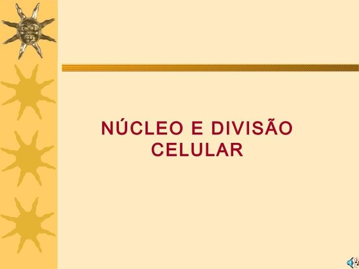 NÚCLEO E DIVISÃO    CELULAR