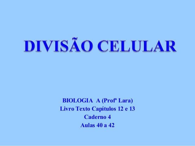 BIOLOGIA A (Profª Lara) Livro Texto Capítulos 12 e 13 Caderno 4 Aulas 40 a 42