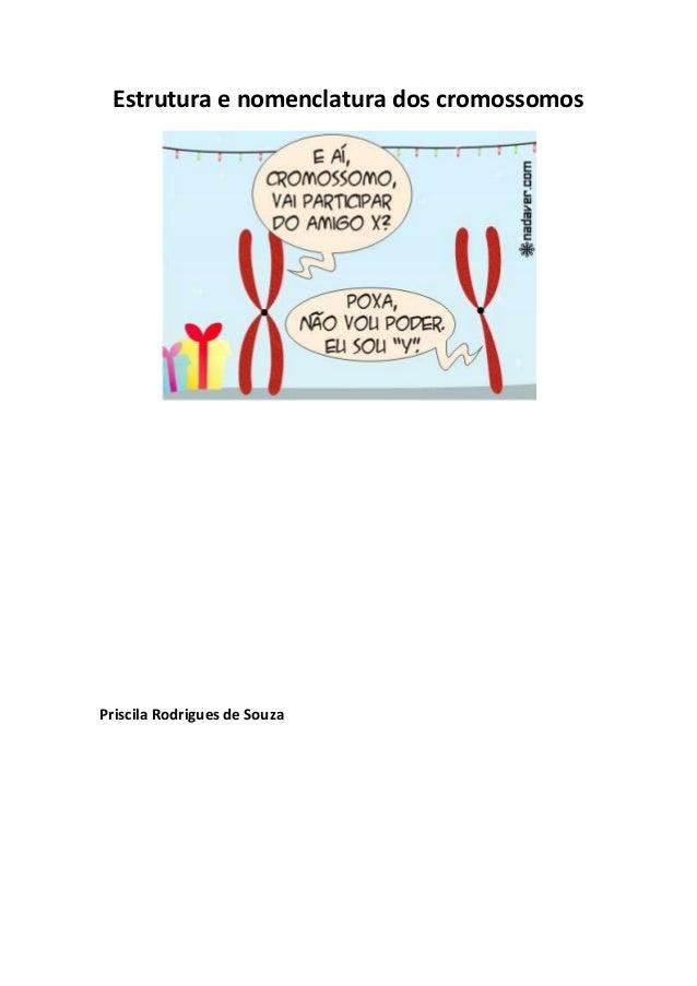 Estrutura e nomenclatura dos cromossomos  Priscila Rodrigues de Souza