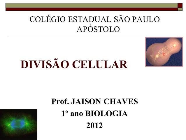 COLÉGIO ESTADUAL SÃO PAULO           APÓSTOLODIVISÃO CELULAR     Prof. JAISON CHAVES       1º ano BIOLOGIA              2012