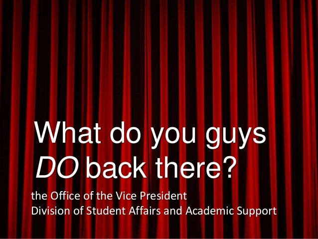 What do you guys DO back there? the Office of the Vice President Division of Student Affairs and Academic Support